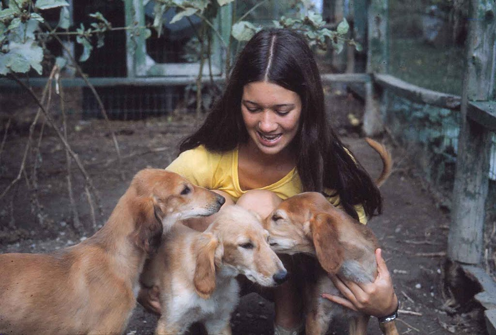 Sister Gwen van Kleef with Saluki Pups